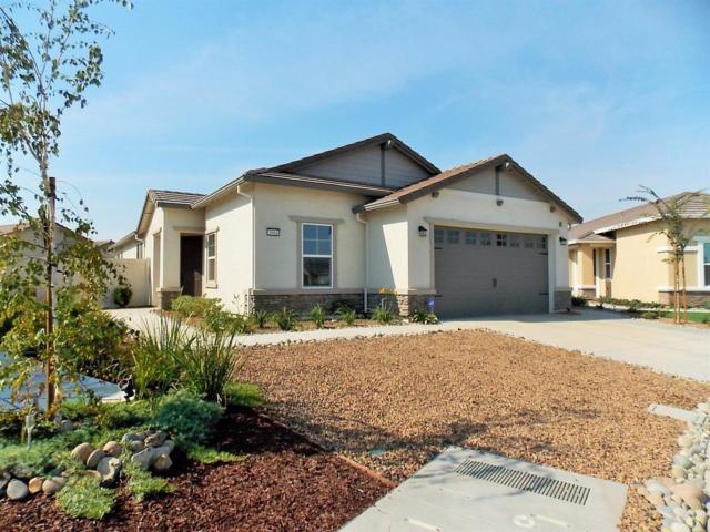1684 Remington Oaks Street, Manteca, CA 95336 (MLS #17061131) :: REMAX Executive