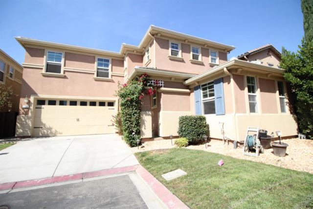 17265 Timber Creek Lane, Lathrop, CA 95330 (MLS #17063468) :: REMAX Executive