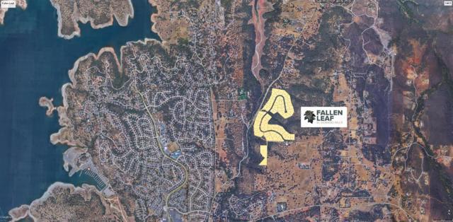 1721 Salmon Falls Rd, El Dorado Hills, CA 95762 (MLS #17064734) :: The MacDonald Group at PMZ Real Estate