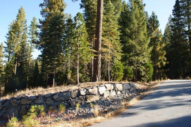 116 Hawk Ridge, Clio, CA 96106 (MLS #17065849) :: Keller Williams - Rachel Adams Group