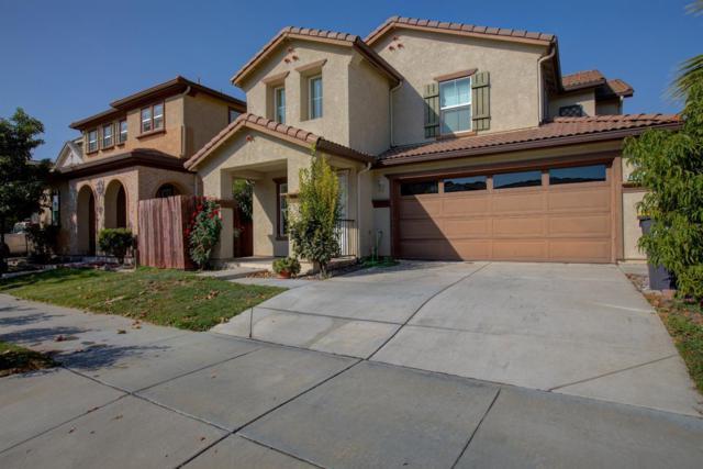17401 Pheasant Downs Drive, Lathrop, CA 95330 (MLS #17065915) :: REMAX Executive