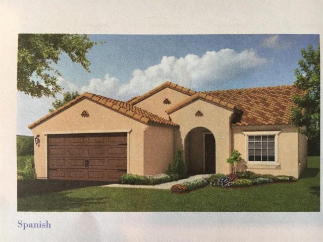 2645 Shadow Berry Drive, Manteca, CA 95336 (MLS #17065958) :: REMAX Executive