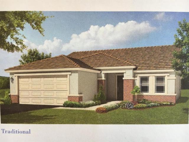 2693 Shadow Berry Drive, Manteca, CA 95336 (MLS #17065999) :: REMAX Executive