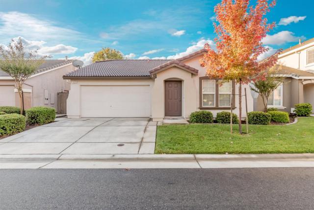 1619 Grey Bunny Drive, Roseville, CA 95747 (MLS #17067414) :: Brandon Real Estate Group, Inc