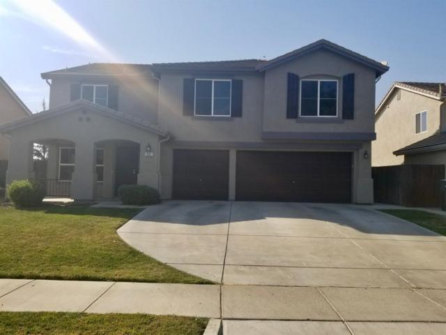 55 Shorthorn Street, Patterson, CA 95363 (MLS #17067416) :: The Del Real Group