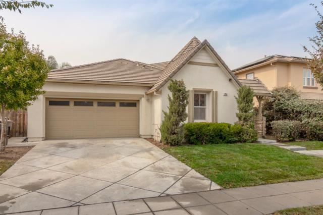 785 Shelli Street, Mountain House, CA 95391 (MLS #17067544) :: REMAX Executive