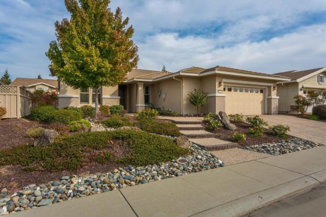 351 Daylily Lane, Lincoln, CA 95648 (MLS #17067724) :: Brandon Real Estate Group, Inc