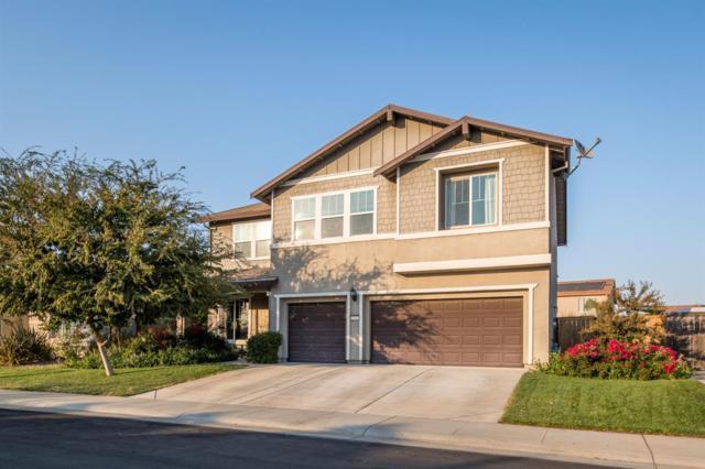 1161 Essington Lane, Roseville, CA 95747 (MLS #17067794) :: Brandon Real Estate Group, Inc