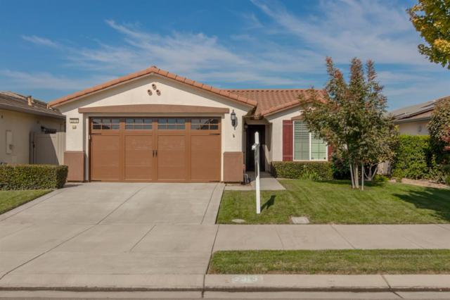 2313 Bellchase Drive, Manteca, CA 95336 (MLS #17067804) :: The Del Real Group