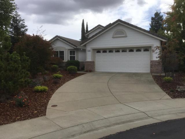 116 Yanks Station Court, Roseville, CA 95747 (MLS #17067846) :: Gabriel Witkin Real Estate Group