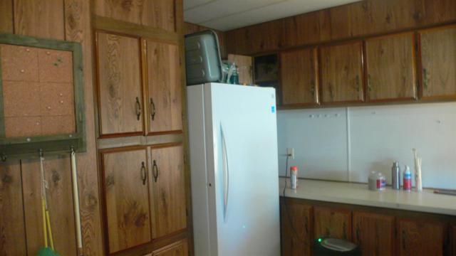 54 Yefim Way, Roseville, CA 95661 (MLS #17067987) :: Gabriel Witkin Real Estate Group
