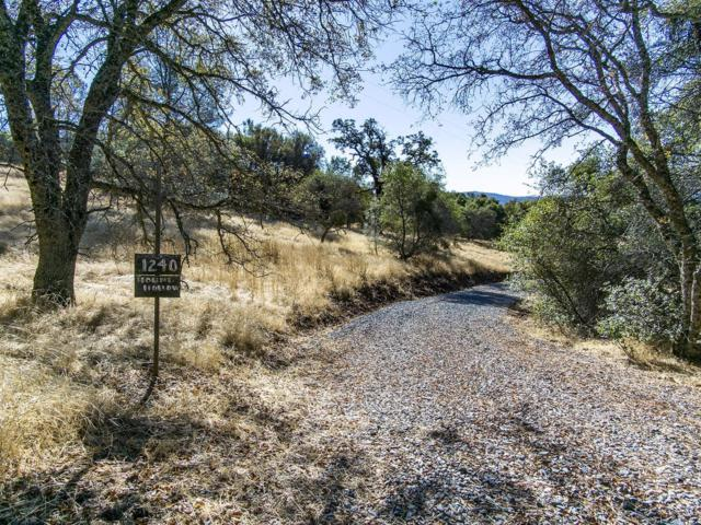 1240 Hound Hollow Road, Pilot Hill, CA 95664 (MLS #17068242) :: Gabriel Witkin Real Estate Group