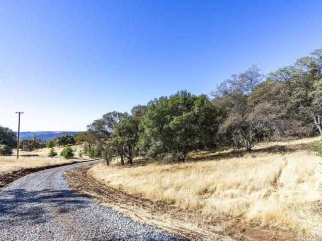 1240 Hound Hollow Road, Pilot Hill, CA 95664 (MLS #17068247) :: Gabriel Witkin Real Estate Group