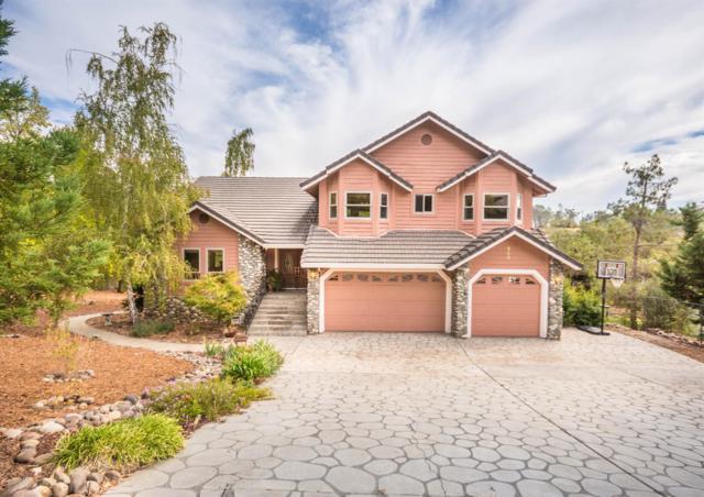 250 Hidden Creek Drive, Auburn, CA 95603 (MLS #17070450) :: Keller Williams Realty