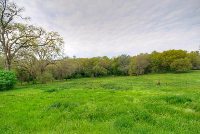 5 Plum Tree Lane, Penryn, CA 95663 (MLS #17070594) :: Keller Williams - Rachel Adams Group