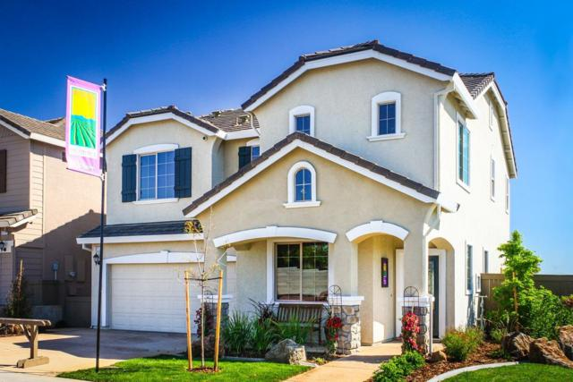 3217 Dolcetto Street, Roseville, CA 95747 (MLS #17071834) :: Heidi Phong Real Estate Team