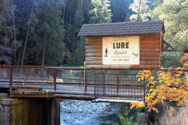 100 Lure Bridge Lane, Downieville, CA 95936 (MLS #17072129) :: Keller Williams - Rachel Adams Group