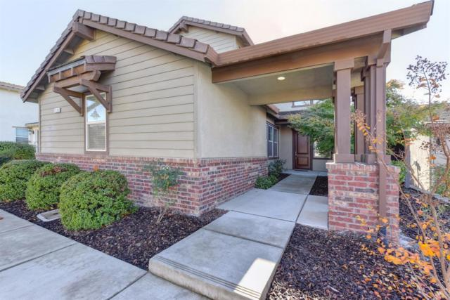 2178 Red Setter Road, Rocklin, CA 95765 (MLS #17072768) :: Keller Williams - Rachel Adams Group
