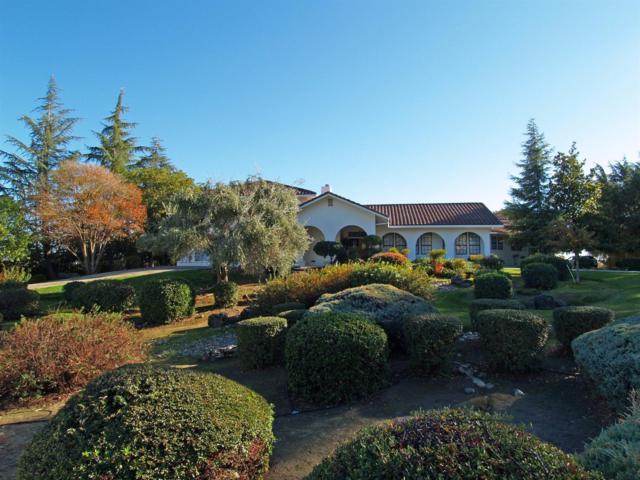 8924 Oak View Drive, Oakdale, CA 95361 (MLS #17073336) :: The Del Real Group