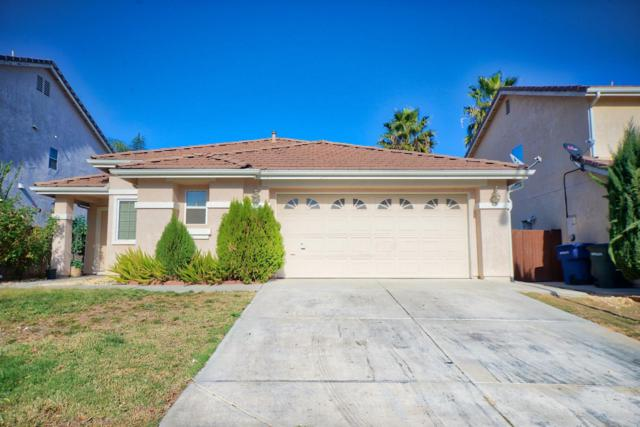 1125 Tern Way, Patterson, CA 95353 (MLS #17073515) :: The Del Real Group