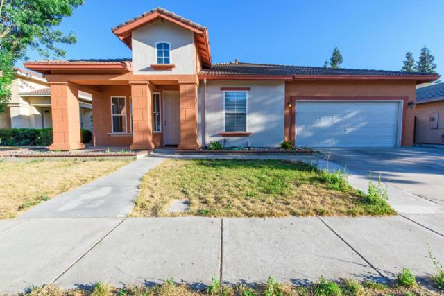 3224 Chandon Drive, Modesto, CA 95355 (MLS #17073712) :: The Del Real Group