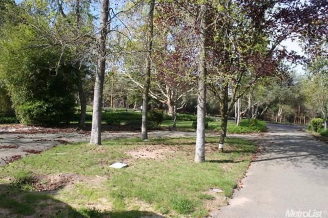 8055 Berg Street, Granite Bay, CA 95746 (MLS #17075494) :: Keller Williams Realty