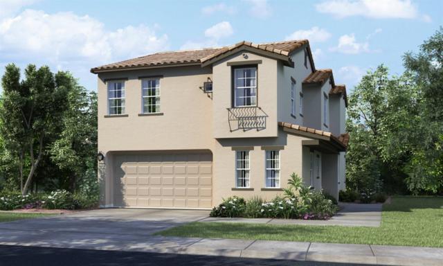 8053 Avanti Drive, El Dorado Hills, CA 95762 (MLS #17076023) :: Keller Williams Realty