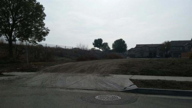 332 Scrub Oak Drive, Lathrop, CA 95330 (MLS #17076116) :: REMAX Executive