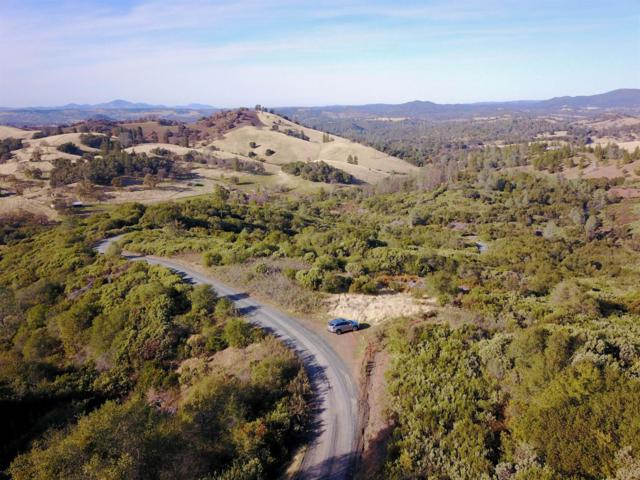 0 Twist Road, Jamestown, CA 95327 (MLS #17076181) :: Keller Williams - Rachel Adams Group