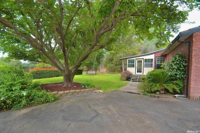 5505 Jackson Valley Road, Ione, CA 95640 (MLS #17076291) :: Keller Williams - Rachel Adams Group
