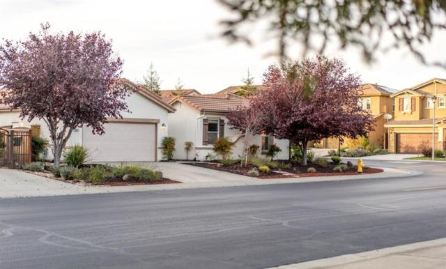 6451 Sonora Pass Way, Rocklin, CA 95765 (MLS #17076651) :: Keller Williams Realty
