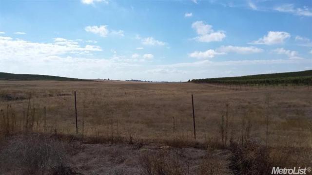 4 Borden Ranch, Herald, CA 95638 (MLS #17076809) :: The Merlino Home Team