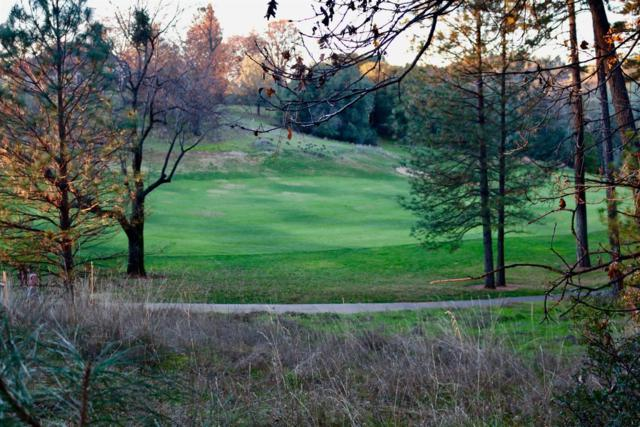23649 Darkhorse Drive, Auburn, CA 95602 (MLS #17076938) :: Heidi Phong Real Estate Team