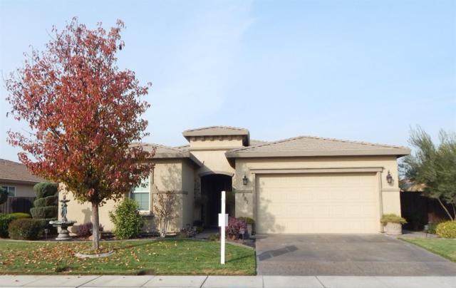 887 Golden Pond Drive, Manteca, CA 95336 (MLS #17076987) :: REMAX Executive