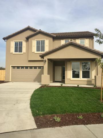 2940 Grand Oak Court, Stockton, CA 95206 (MLS #17077319) :: REMAX Executive