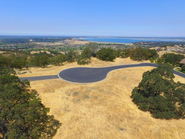 84-LOT Plio Court, El Dorado Hills, CA 95762 (MLS #17078216) :: Keller Williams - Rachel Adams Group