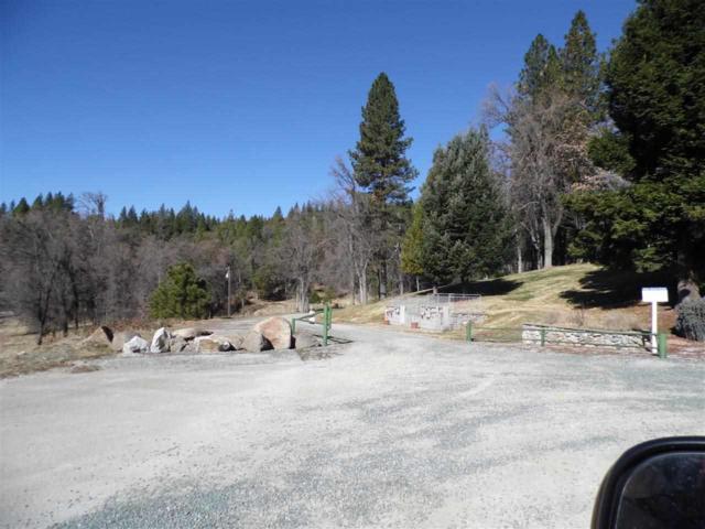 25755 Highway 88, Pioneer, CA 95666 (MLS #17600563) :: Dominic Brandon and Team