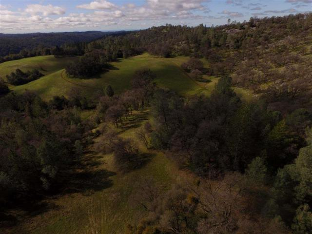 0-0 Cedar Pines Drive, Fiddletown, CA 95629 (MLS #17601573) :: NewVision Realty Group