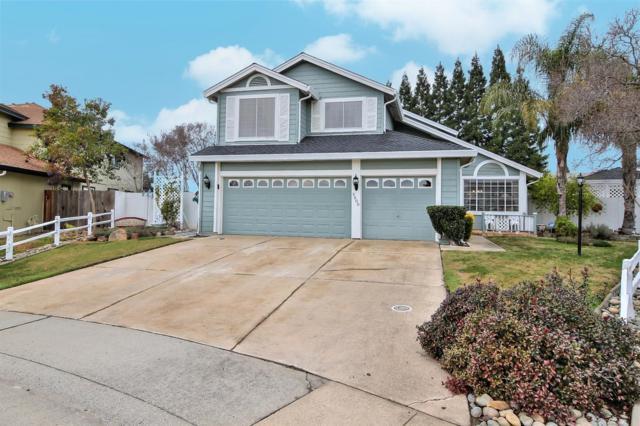5600 Terrace Drive, Rocklin, CA 95765 (MLS #18000952) :: Keller Williams - Rachel Adams Group