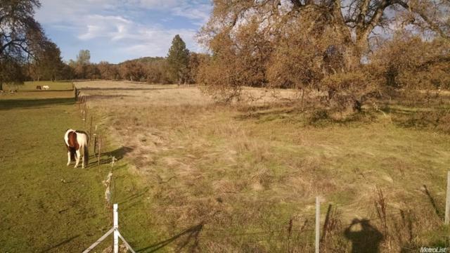 17520 Cattle Drive, Penn Valley, CA 95946 (MLS #18001125) :: Keller Williams - Rachel Adams Group