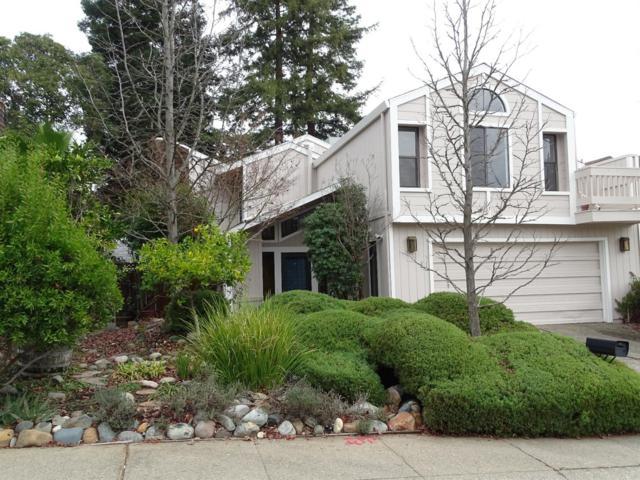 8113 Walnut Fair Circle, Fair Oaks, CA 95628 (MLS #18001672) :: SacramentoFindAHome.com at RE/MAX Gold