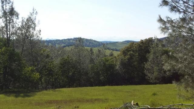 20375 Deer Meadow, Penn Valley, CA 95946 (MLS #18003524) :: Keller Williams - Rachel Adams Group
