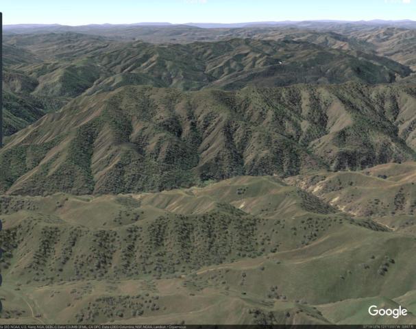0 Orestimba Creek, Newman, CA 95360 (MLS #18006495) :: Keller Williams - Rachel Adams Group