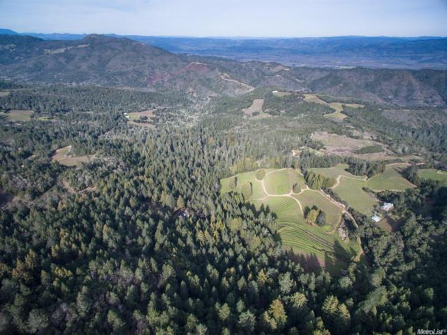 3601 Mount Veeder, Napa, CA 94558 (MLS #18006619) :: Dominic Brandon and Team
