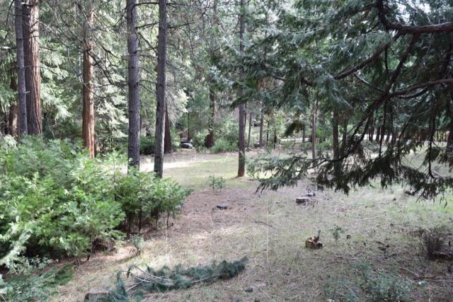 26995 Silver Drive, Pioneer, CA 95666 (MLS #18006703) :: Keller Williams - Rachel Adams Group