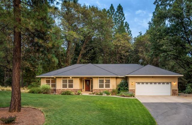 22005 Farrier Court, Foresthill, CA 95631 (MLS #18006806) :: Dominic Brandon and Team