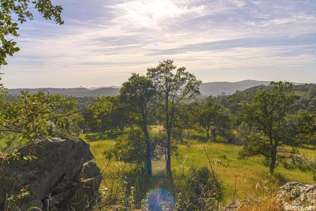 0 Shoreline, Placerville, CA 95667 (MLS #18006952) :: Team Ostrode Properties
