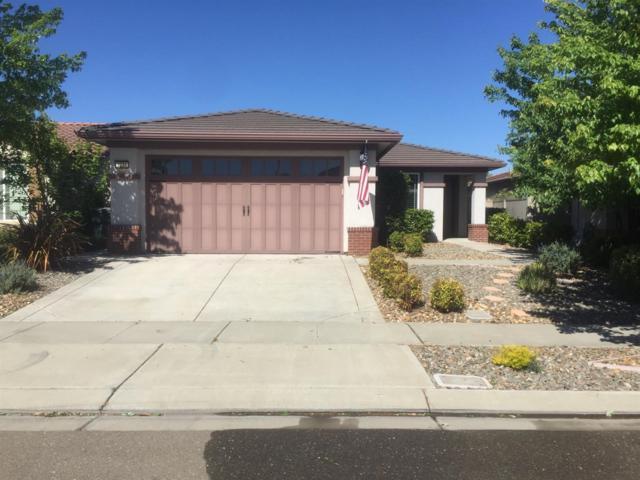 2331 Acorn Meadows Lane, Manteca, CA 95336 (MLS #18007442) :: Keller Williams - Rachel Adams Group
