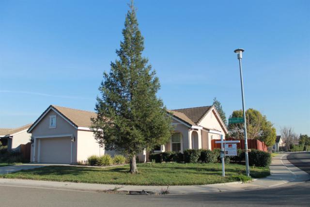 5000 Falabella Way, Elk Grove, CA 95757 (MLS #18007644) :: Keller Williams - Rachel Adams Group