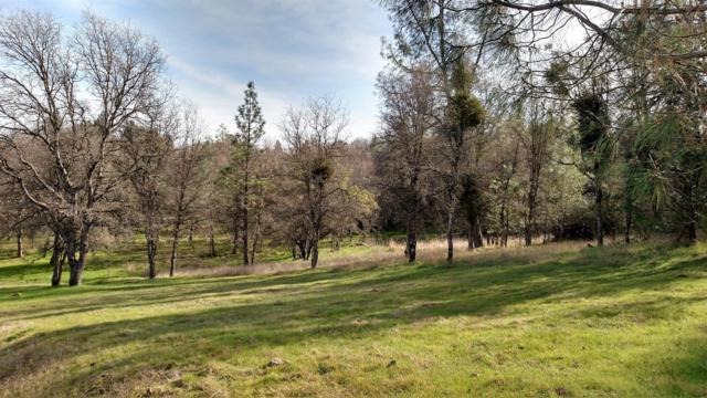 3128 Sweetwater Trail, Cool, CA 95614 (MLS #18007695) :: Dominic Brandon and Team